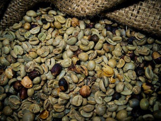 Finca Rosa Blanca Coffee Plantation Resort:                   beans