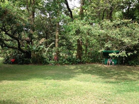 Park Eden Bed & Beakfast:                   Gartenanlage mit Hollywoodschaukel