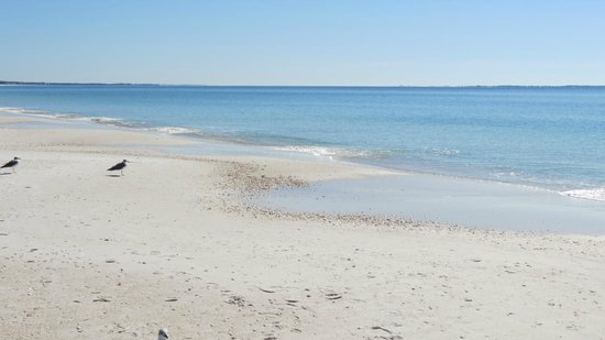 Mexico Beach 2018 All You Need To Know Before Go With Photos Tripadvisor