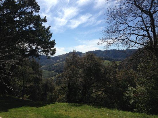 Meadowood Napa Valley: View from the trail