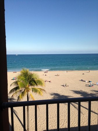 Florida Beach Hotels:                   Balcony View OceanFront Room