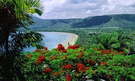 Port Douglas, Avustralya: Photo provided by ©4Corners
