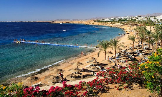 Sharm El Sheikh : restaurants