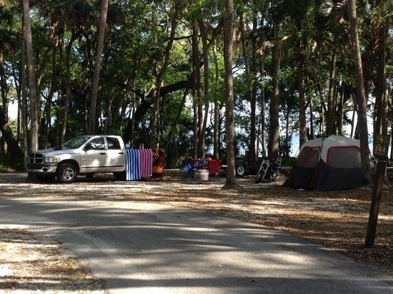 Manatee Hammock Campground: our camp site