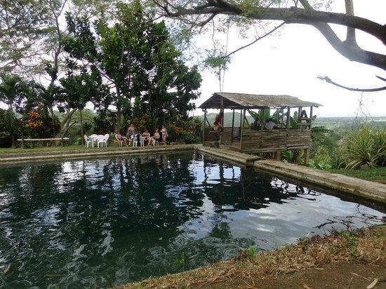 Westmoreland Parish, Jamaica:                   This is looking at the pool and vista behind