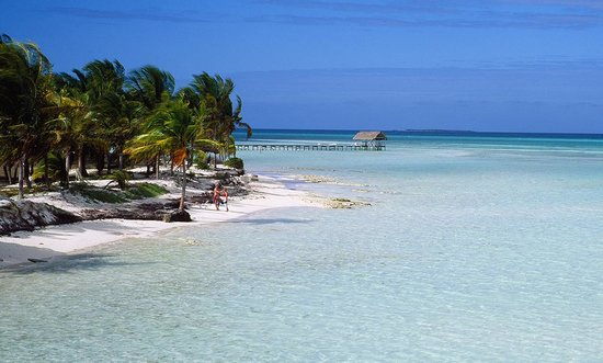 Cayo Coco, Cuba : Photo provided by ©4Corners