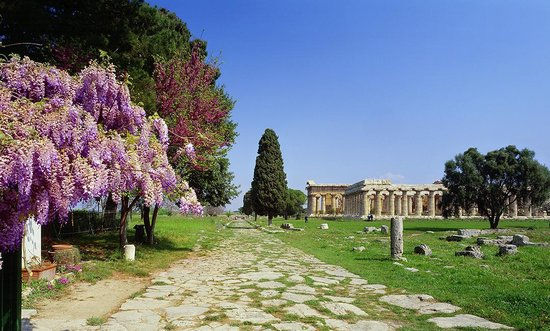 Greek Restaurants in Capaccio-Paestum