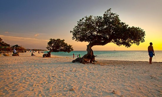Palm Beach/Eagle Beach, Aruba: Photo provided by ©4Corners
