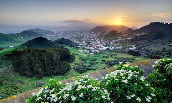Tenerife, İspanya: Photo provided by ©4Corners