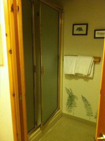 Mountain Springs Lodge: toilet and shower closet. cheap stall and floor, but very clean!! northwest room