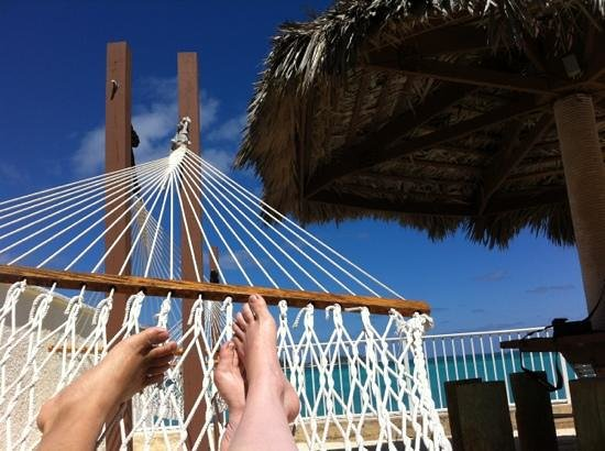West Wind Club:                   enjoying one of the two hammocks at club house