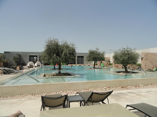 Aloft Abu Dhabi:                   Pool side
