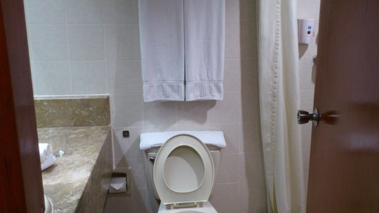 Palm Plaza Hotel: Toilet