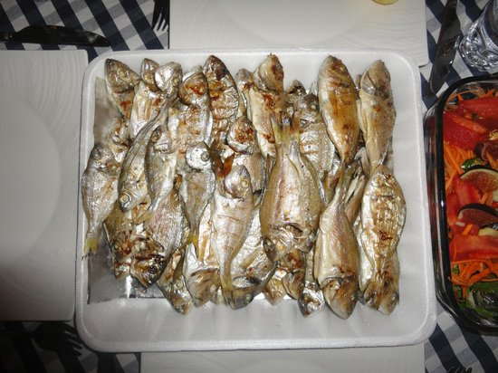 Otel MaSaLa :                   Fresh fishes, catched by my girlfriend...