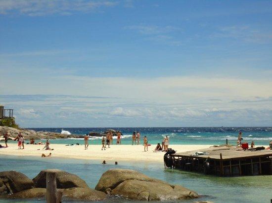 Nangyuan Island Dive Resort:                   beach