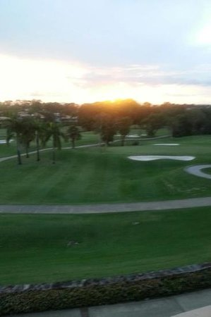 Noosa Springs Golf & Spa Resort :                   sunset over the course