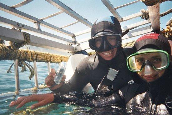 Shark Seekers: Exhilaration!