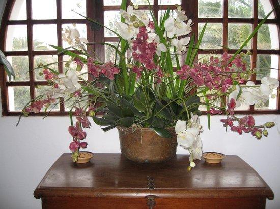 Rural Cortijo San Ignacio Golf:                   décor fleuri