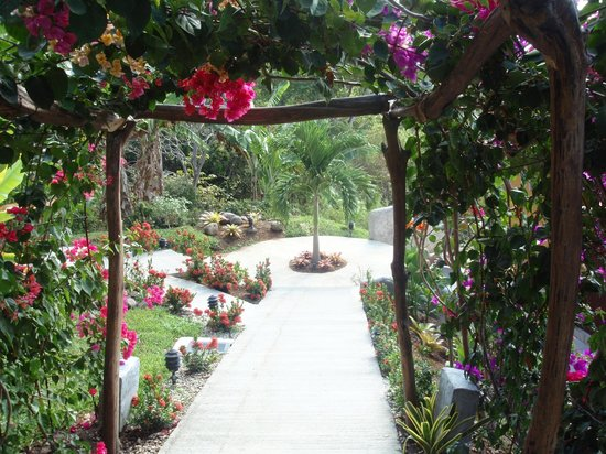 Vista Las Islas Hotel & Spa:                   liebevoll bepflanzter Weg im Vista las Islas