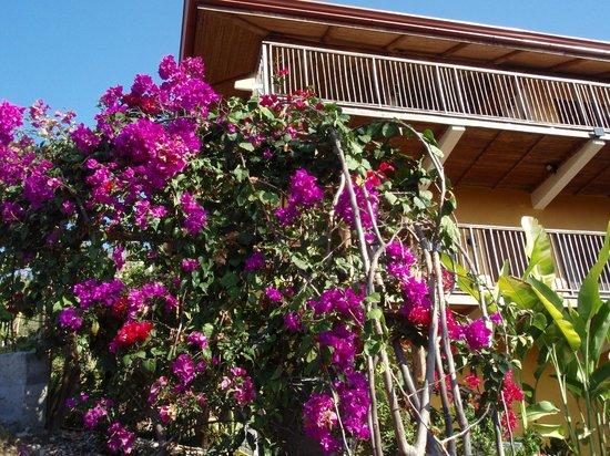 Vista Las Islas Hotel & Spa:                   offenes Restaurant