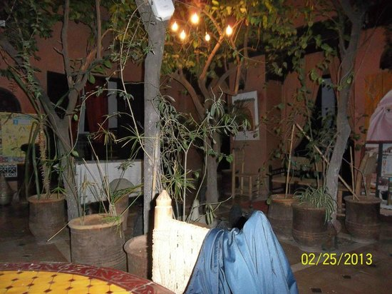 Riad Sidi Omar:                   giardino interno