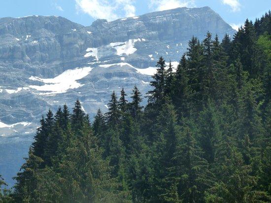Diablerets Tourisme :                   Le glacier
