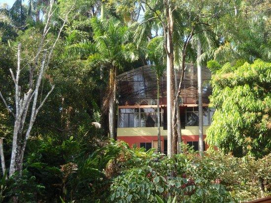 Condotel Las Cascadas:                   unser Bungalow hoch oben