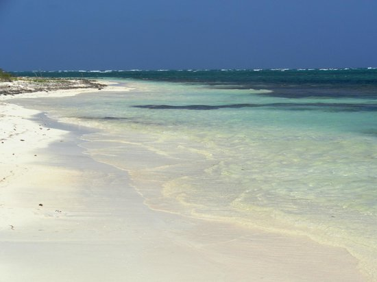 Mayan Beach Garden:                   mare