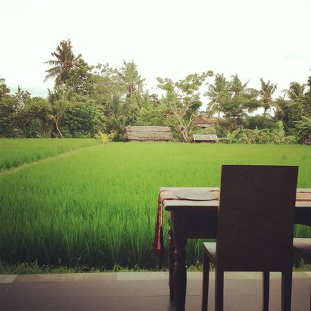 Bayu Guest House:                   A room with paddy field view