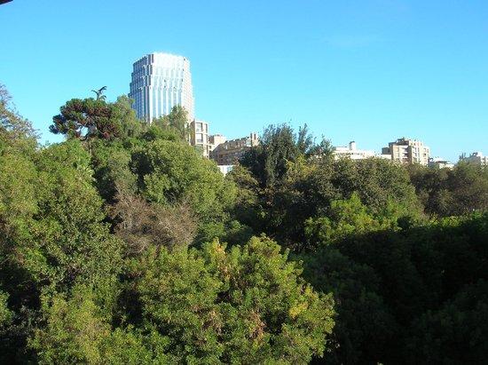 Hotel Montecarlo: Vista del Cerro Santa Lucía