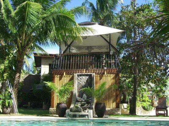 Cebu Marine Beach Resort: Wasserfall