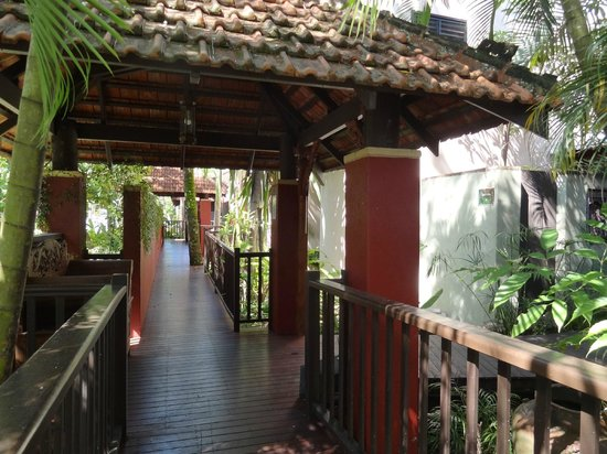 Hibiscus Gardens Spa Resort:                   walkway to some of the rooms from reception