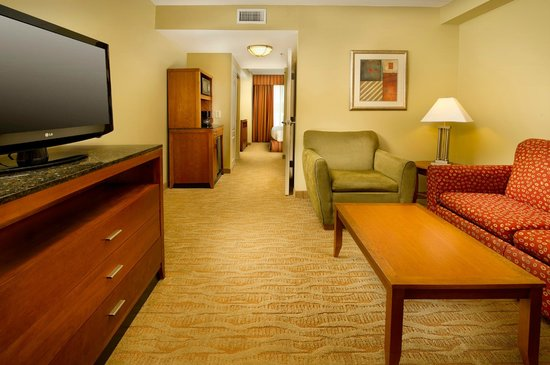 Hilton Garden Inn Atlanta NW / Kennesaw Town Center :                   Living area