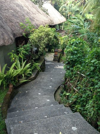 Kebun Indah:                   stairs leading to the pool side