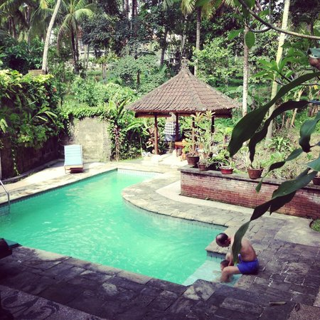 Kebun Indah:                   Hotel pool side