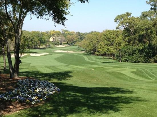Innisbrook, A Salamander Golf & Spa Resort:                   number 1 at Copperhead