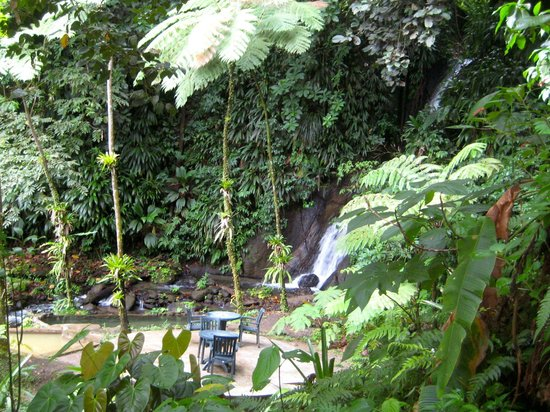 Papillote Tropical Gardens:                   falls on the property of Papillote