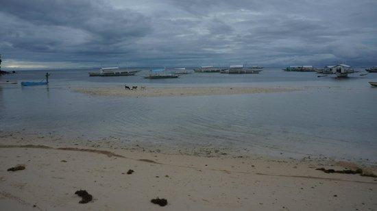 Logon Beach:                   Logon 2
