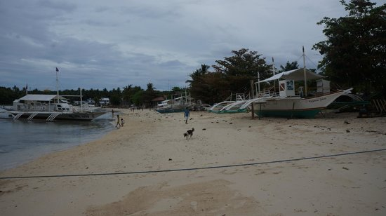 Logon Beach:                   Logon 8
