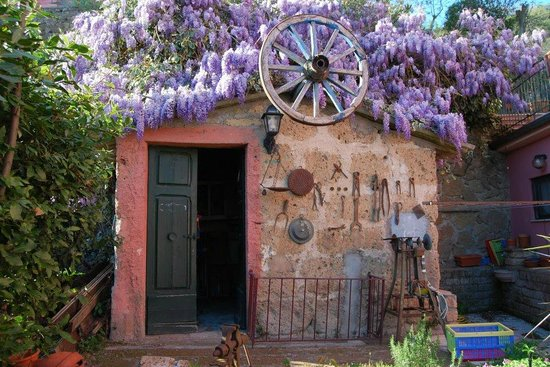 La Casa dei Carrai: spring in the garden