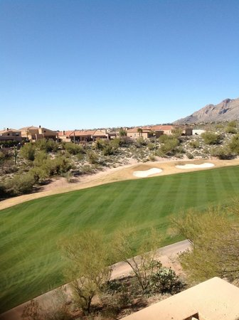 Westin La Paloma Resort and Spa:                   View from room