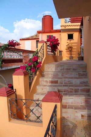 Casa Marla y Fernando:                   terrazzo