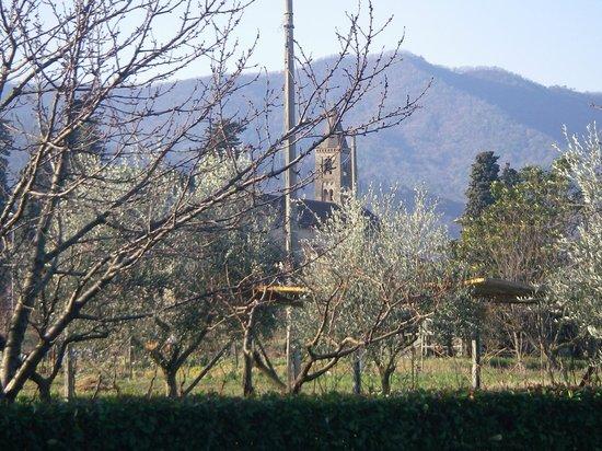 Salvia & Rosmarino B&B:                   panorama