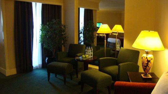 Radisson Blu Hotel, Dubai Deira Creek:                   Sitting area