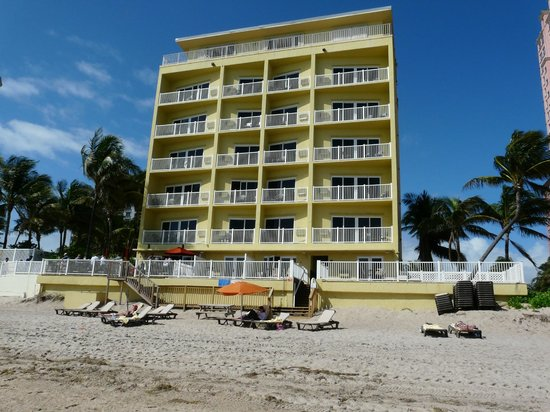 Sun Tower Hotel & Suites on the beach :                   View from the beach