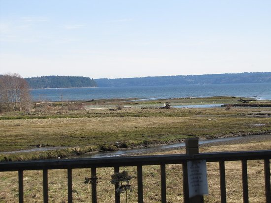 Geoduck Restaurant Lounge: Hood canal from the deck