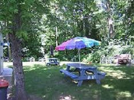 Yankee Trail Motel: Picnic area
