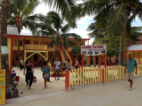 Paradise, Too Hotel : Snorkel Tour