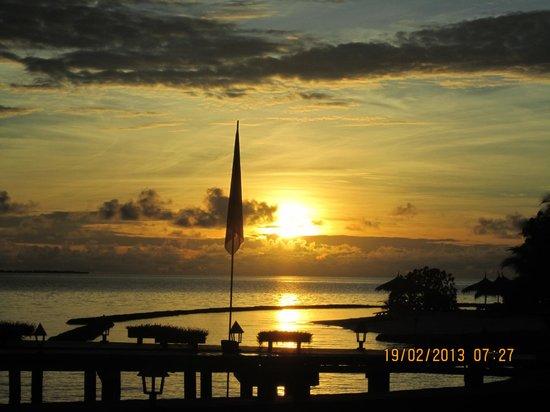 Gangehi Island Resort:                   Alba