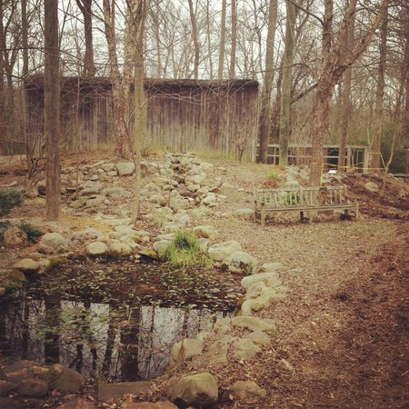Reflection Riding Arboretum & Nature Center: cool pic